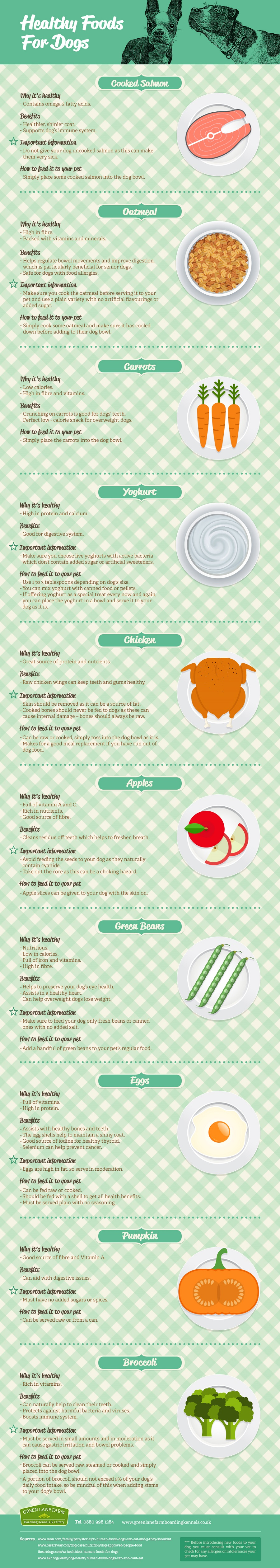 healthy and tasty treats for dogs