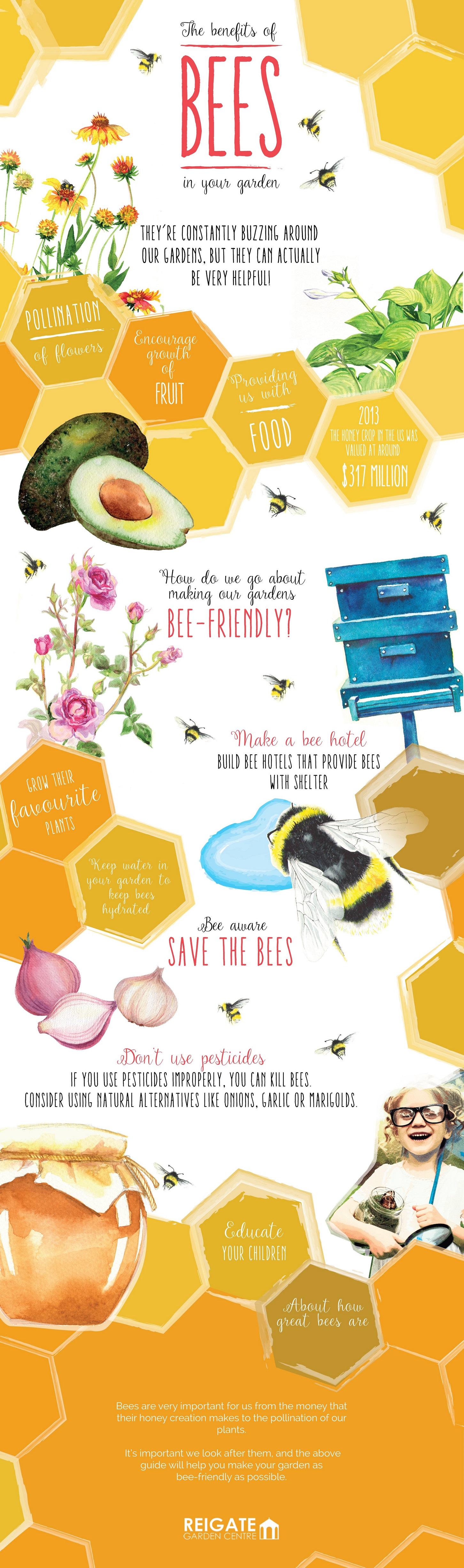 benefit of bees in your garden infographic